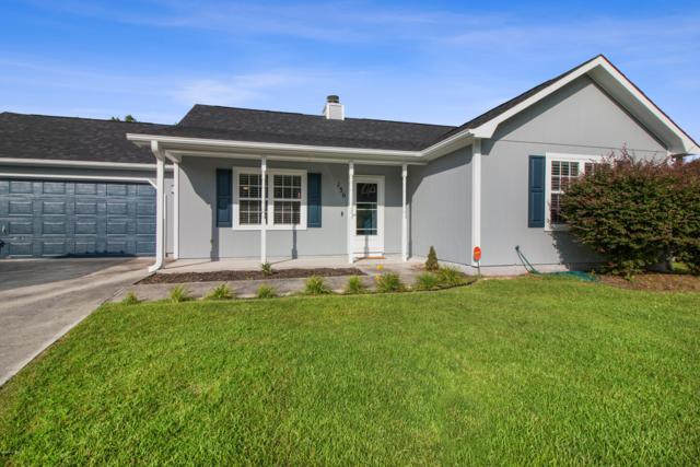136 Daphne Drive, Hubert, NC 28539 (MLS #100175114) :: RE/MAX Elite Realty Group