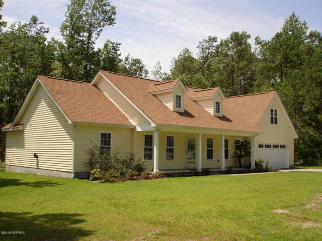 110 Seattle Slew Drive, Havelock, NC 28532 (MLS #100175187) :: Lynda Haraway Group Real Estate