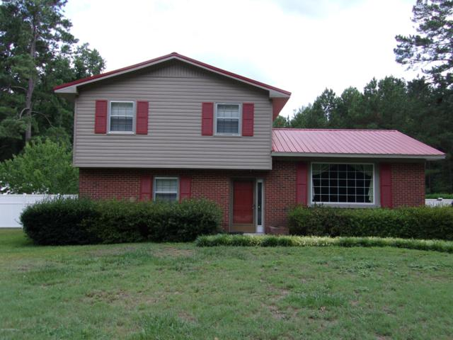 11660 Azalea Drive, Laurinburg, NC 28352 (MLS #100175565) :: The Keith Beatty Team