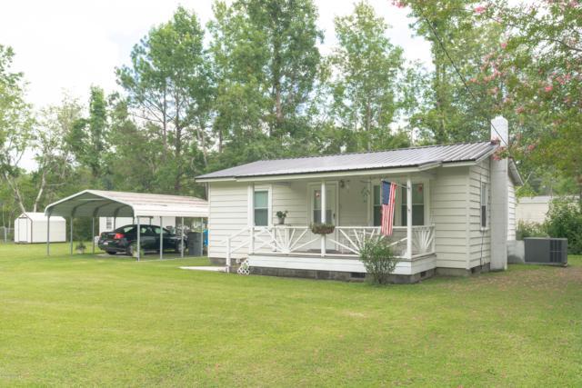 2100 Teresa Drive, Castle Hayne, NC 28429 (MLS #100175566) :: Courtney Carter Homes
