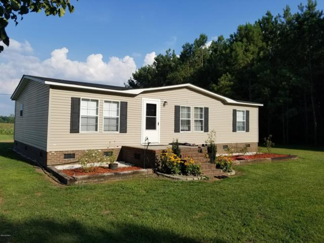 6599 Hwy 258 S, Deep Run, NC 28525 (MLS #100175576) :: RE/MAX Essential