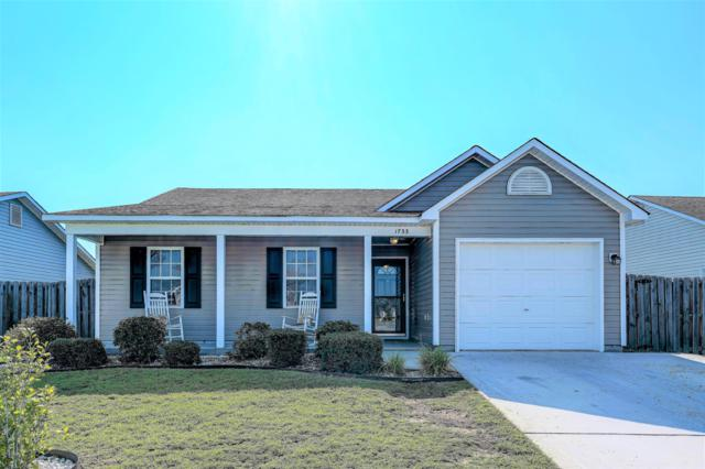 1733 Pepperwood Way, Leland, NC 28451 (MLS #100175653) :: RE/MAX Essential