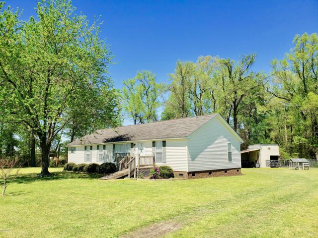 2417 Wild Cat Road, Williamston, NC 27892 (MLS #100175675) :: RE/MAX Essential