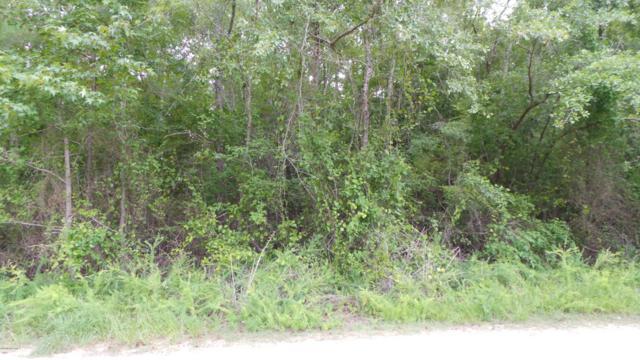 0 E Marney Drive, Burgaw, NC 28425 (MLS #100175935) :: Century 21 Sweyer & Associates