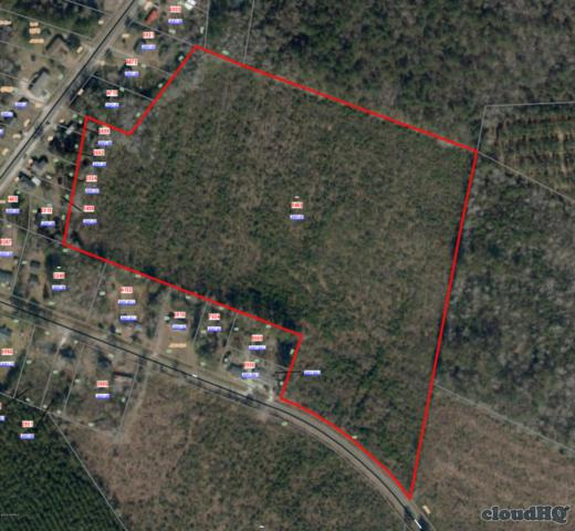 235 Lynchs Beach Road, Bayboro, NC 28515 (MLS #100175962) :: Lynda Haraway Group Real Estate