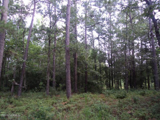 . Lightwood Lane SW, Shallotte, NC 28470 (MLS #100176142) :: Century 21 Sweyer & Associates