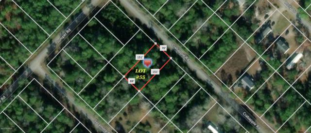 371 & 381 Crab Apple Road, Southport, NC 28461 (MLS #100176171) :: Century 21 Sweyer & Associates