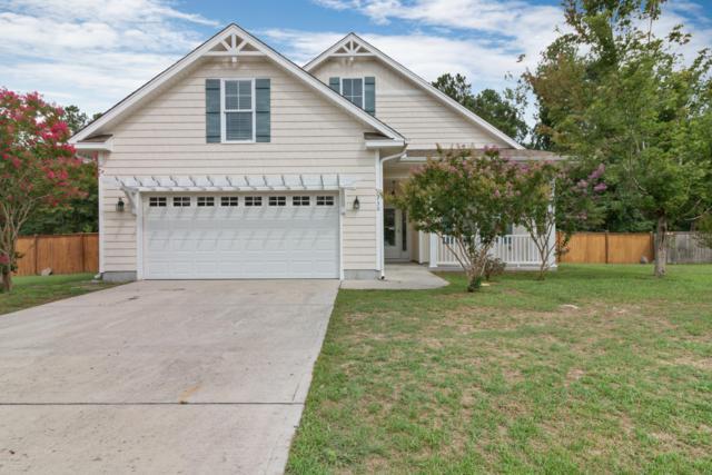 230 Blue Creek Farms Drive, Jacksonville, NC 28540 (MLS #100176235) :: Berkshire Hathaway HomeServices Hometown, REALTORS®