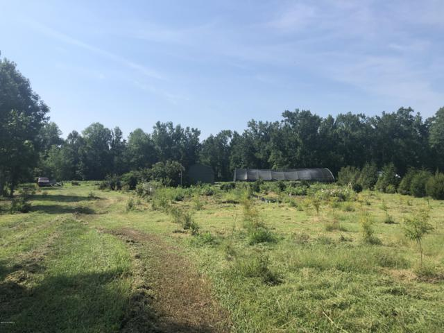 0 Englishtown Road, Wallace, NC 28466 (MLS #100176237) :: Lynda Haraway Group Real Estate
