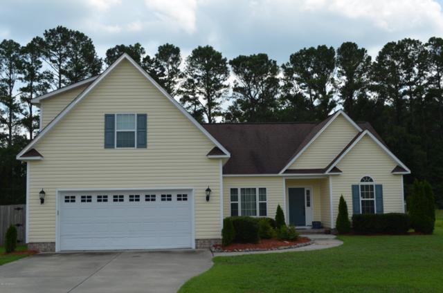 207 Pecan Grove Court, New Bern, NC 28562 (MLS #100176374) :: Lynda Haraway Group Real Estate