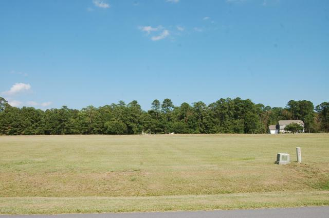 206 Long Creek Drive, Havelock, NC 28532 (MLS #100176472) :: Castro Real Estate Team