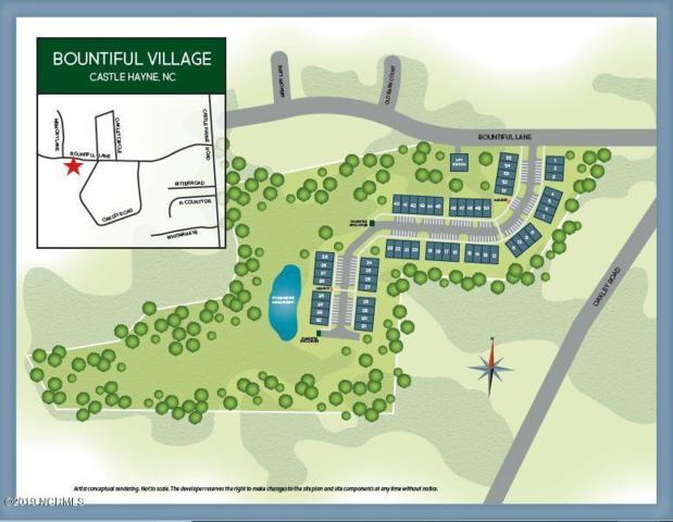 561 Bountiful Lane, Castle Hayne, NC 28429 (MLS #100176805) :: RE/MAX Essential
