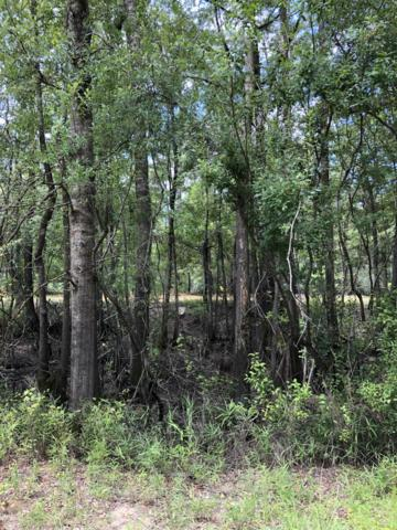 5 Beaver Trail, Burgaw, NC 28425 (MLS #100177032) :: Century 21 Sweyer & Associates