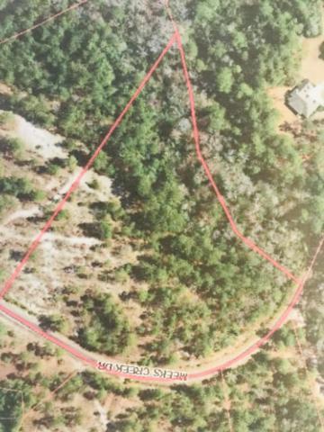 6740 Meeks Creek Drive, Rocky Point, NC 28457 (MLS #100177504) :: David Cummings Real Estate Team