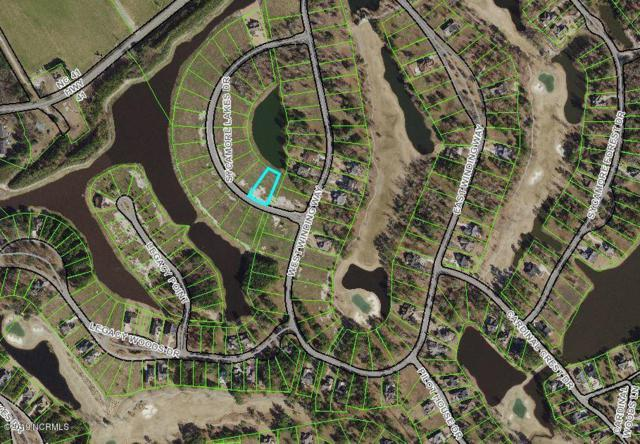 175 Sycamore Lakes Drive, Wallace, NC 28466 (MLS #100178048) :: The Cheek Team