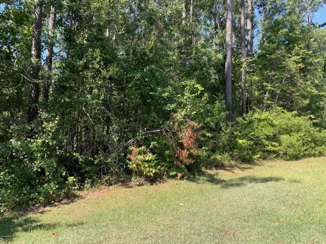 438 Woodland Drive, Swansboro, NC 28584 (MLS #100178979) :: The Cheek Team