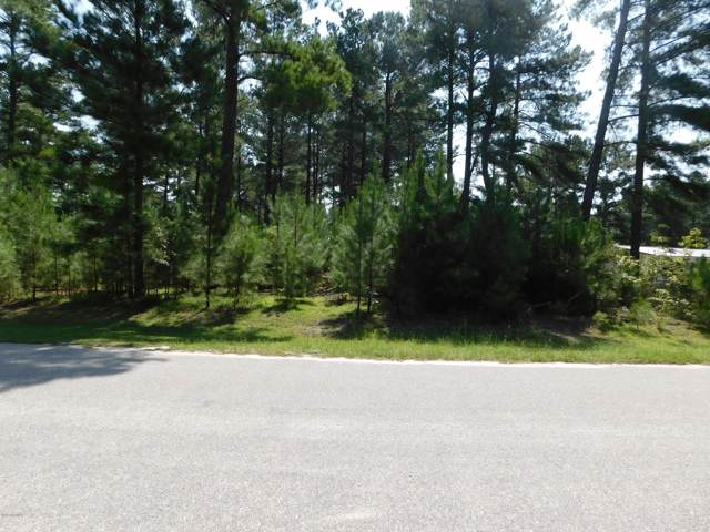 21001 River Birch Drive, Wagram, NC 28396 (MLS #100179006) :: The Keith Beatty Team