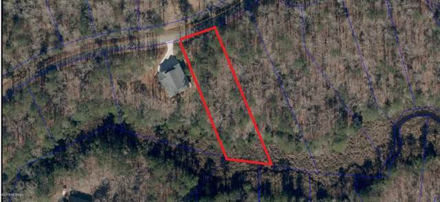 170 Winding Creek Drive, Oriental, NC 28571 (MLS #100179631) :: Frost Real Estate Team