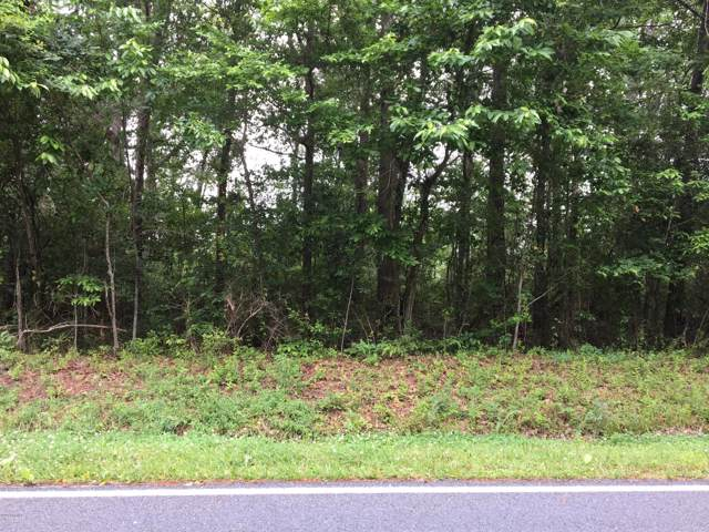 900 Orchard Creek Road, Oriental, NC 28571 (MLS #100179728) :: The Chris Luther Team