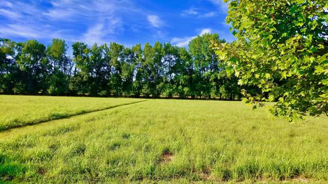 Lot 9 Pumpernickel Place, Washington, NC 27889 (MLS #100180394) :: Chesson Real Estate Group