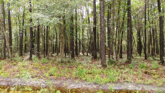 1578 Driftwood Drive SW, Ocean Isle Beach, NC 28469 (MLS #100180651) :: Donna & Team New Bern