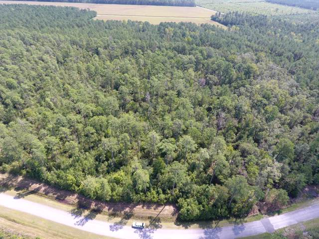 Lot 63 Arant Farm Road, Merritt, NC 28556 (MLS #100181067) :: RE/MAX Essential