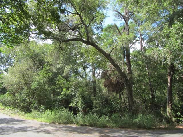 2020 Palmetto Cove Court, Bald Head Island, NC 28461 (MLS #100181553) :: Courtney Carter Homes