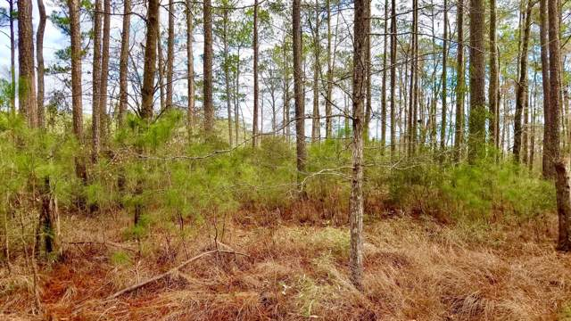 Lot 9 Pitch Kettle Court, Belhaven, NC 27810 (MLS #100182247) :: Frost Real Estate Team