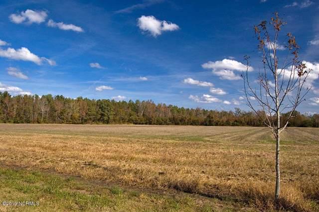 2 Seawell Loop Road, Bayboro, NC 28515 (MLS #100182539) :: Courtney Carter Homes