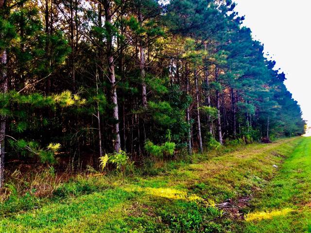 0 State Rd 1444 End, Washington, NC 27889 (MLS #100183462) :: The Keith Beatty Team