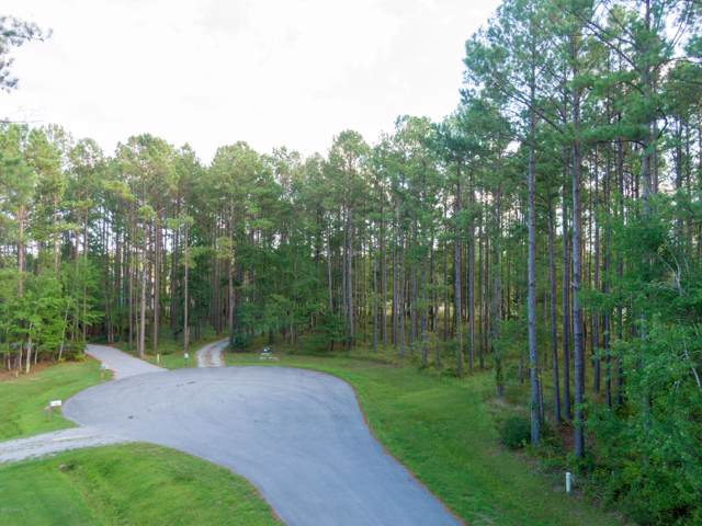 762 Bent Tree Road, Oriental, NC 28571 (MLS #100183631) :: RE/MAX Elite Realty Group