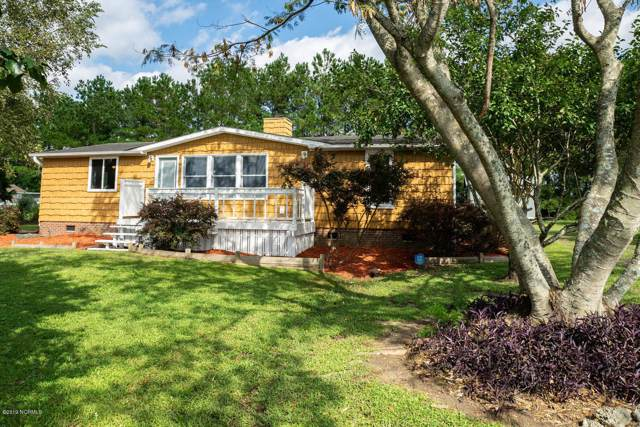 36 Green Hill Court, Rocky Point, NC 28457 (MLS #100183988) :: Courtney Carter Homes