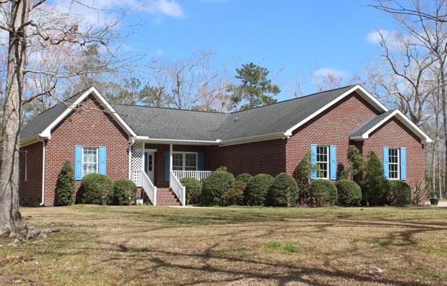 169 Winding Creek Drive, Oriental, NC 28571 (MLS #100184119) :: Lynda Haraway Group Real Estate