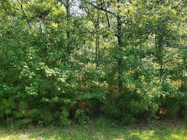 Lot 24 Sunset Point Road, Belhaven, NC 27810 (MLS #100184152) :: Lynda Haraway Group Real Estate