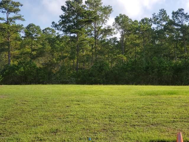 309 Lightning Bug Lane, Holly Ridge, NC 28445 (MLS #100184763) :: Courtney Carter Homes