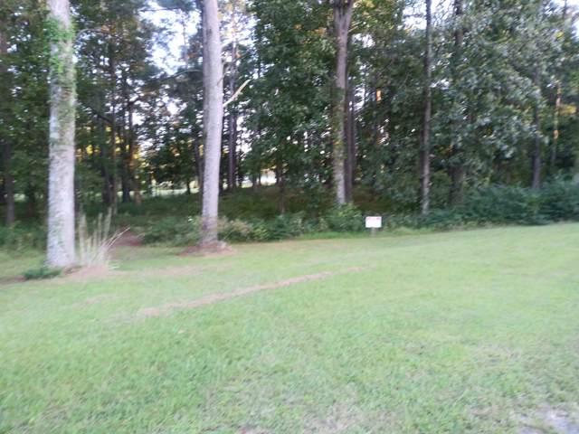 62 Golf Course Drive, Pinetops, NC 27864 (MLS #100185017) :: The Cheek Team