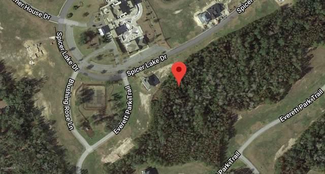 318 Spicer Lake Drive, Holly Ridge, NC 28445 (MLS #100185433) :: The Keith Beatty Team