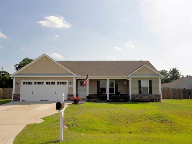 202 Long Neck Drive, Richlands, NC 28574 (MLS #100187019) :: Courtney Carter Homes