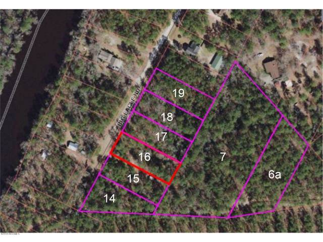 14 Big Eagle Road, Atkinson, NC 28421 (MLS #100187340) :: RE/MAX Elite Realty Group