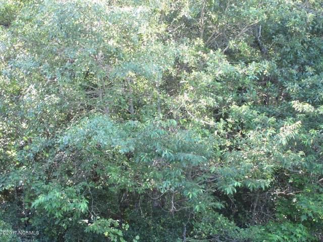 0 Red Tip Lane, Willard, NC 28478 (MLS #100187729) :: CENTURY 21 Sweyer & Associates