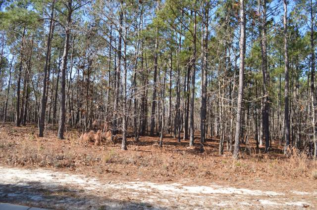 3057 Sounding Street SE, Bolivia, NC 28422 (MLS #100188469) :: Destination Realty Corp.