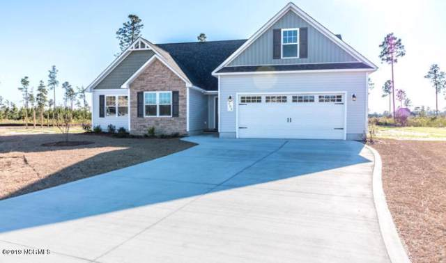 205 Timber Jack Court, Jacksonville, NC 28546 (MLS #100188993) :: The Cheek Team