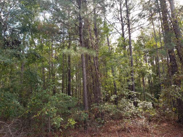 Lot 37 E Waterway Drive, Belhaven, NC 27810 (MLS #100189565) :: David Cummings Real Estate Team