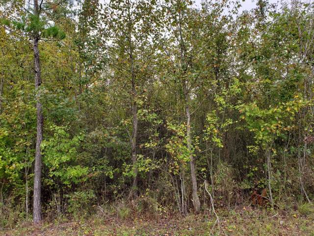 0 Core Point Road, Blounts Creek, NC 27814 (MLS #100189874) :: Lynda Haraway Group Real Estate