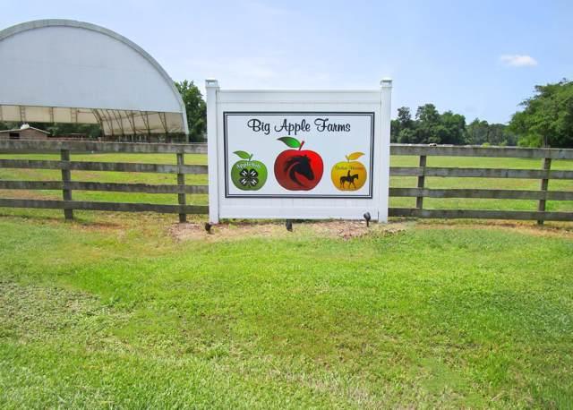 1130 Big Apple Farms Lane, Williamston, NC 27892 (MLS #100190143) :: The Keith Beatty Team