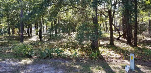 769 Lakeside Drive SE, Bolivia, NC 28422 (MLS #100190192) :: Lynda Haraway Group Real Estate