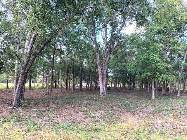 1954 Redfish SW, Supply, NC 28462 (MLS #100190281) :: The Keith Beatty Team