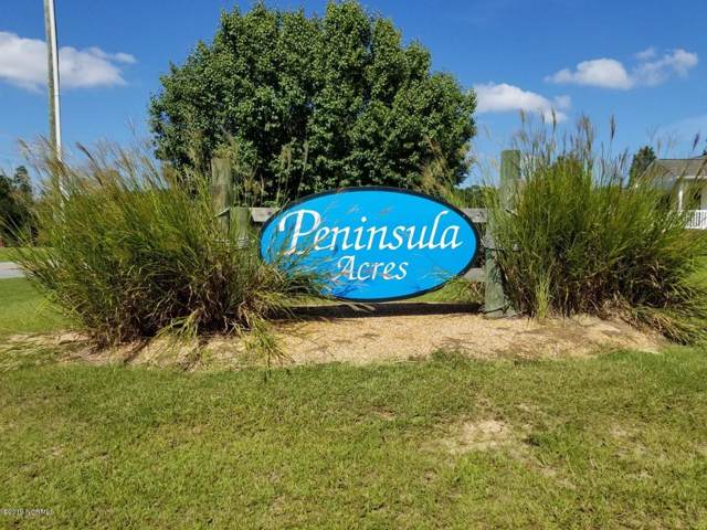 13 Peninsula Drive, Bath, NC 27808 (MLS #100191372) :: RE/MAX Essential