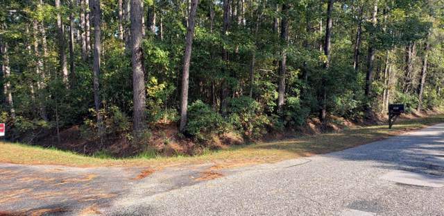 384 Thicket Drive NW, Calabash, NC 28467 (MLS #100191967) :: The Bob Williams Team