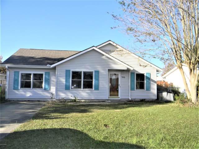 705 Badger Lane, Havelock, NC 28532 (MLS #100192940) :: RE/MAX Elite Realty Group